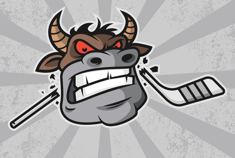 Avoiding Automotive Digital Marketing Bull Hockey
